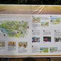 写真: 名古屋城まるはち博覧祭:東門会場 - 07(「世界の金シャチ横丁」基本構想)