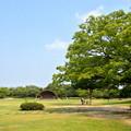 写真: 非常に暑い夏の日の桃花台中央公園 - 3