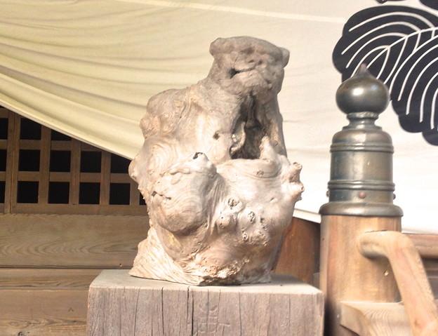 内々神社:社殿にある古い…狛犬? - 2