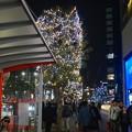 Photos: ミッドランドスクエア周辺のクリスマスイルミネーション - 06