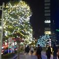 Photos: ミッドランドスクエア周辺のクリスマスイルミネーション - 07