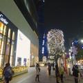 Photos: ミッドランドスクエア周辺のクリスマスイルミネーション - 08