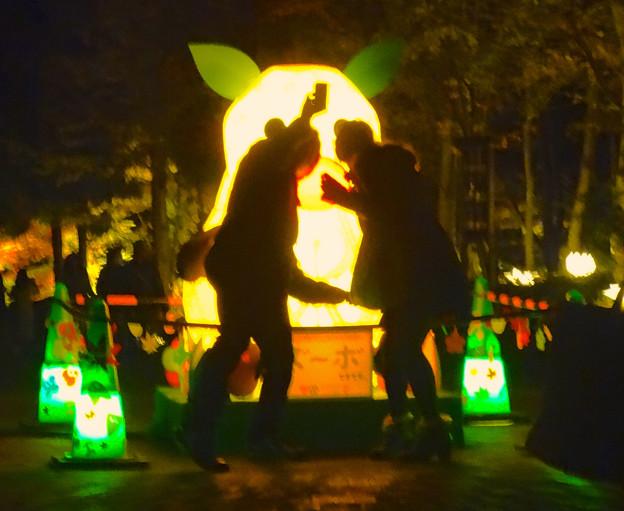 写真: 東山植物園 紅葉ライトアップ 2013 No - 119:「ズーボ」のイルミネーション前で写真を撮るカップル
