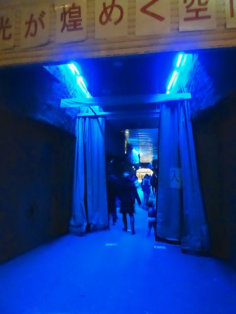 写真: 東山植物園 紅葉ライトアップ 2013 No - 120:星が丘門まで通じるトンネル
