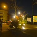 写真: 東山動植物園 星が丘門前の「星のイルミネーション」No - 1
