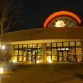 写真: 東山動植物園 星が丘門前の「星のイルミネーション」No - 2