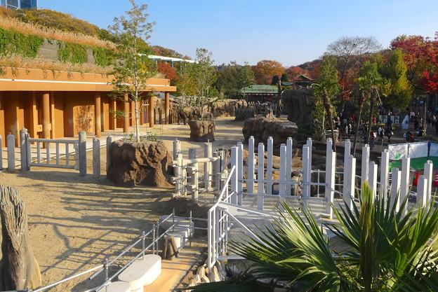 新旧アジアゾウ舎を繋ぐ、象移動用のルート - 08
