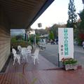 写真: 植物会館:緑の中の彫刻展 - 11