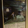 写真: 東山動植物園 星が丘門の畜光ライトアップ No - 1