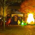 写真: 東山植物園 紅葉ライトアップ 2013 最終日 No - 07:星が丘門前のズーボのイルミネーション前で写真を撮る人々