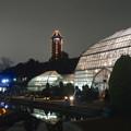 写真: ライトアップされたフラワーステージと東山スカイタワー - 1