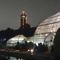 写真: ライトアップされたフラワーステージと東山スカイタワー - 2
