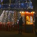 写真: ノリタケの森のクリスマスイルミネーション 2013 No - 29