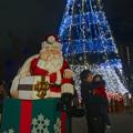 写真: ノリタケの森のクリスマスイルミネーション 2013 No - 35:ツリーとサンタ