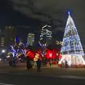 写真: ノリタケの森のクリスマスイルミネーション 2013 No - 45