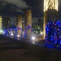 写真: ノリタケの森のクリスマスイルミネーション 2013 No - 52