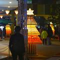 写真: アスナル金山のクリスマス・イルミネーション 2013 No - 14