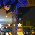 写真: アスナル金山のクリスマス・イルミネーション 2013 No - 15