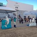 写真: 名古屋港水族館ペンギンよちよちウォーク 2013年12月 No - 04:会場となる「しおかぜ広場」