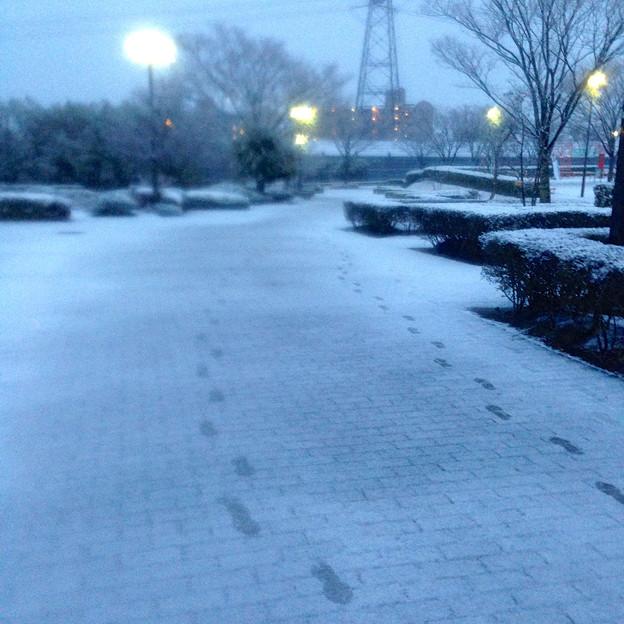 薄っすらと道路に積もった雪、そして足跡 - 10