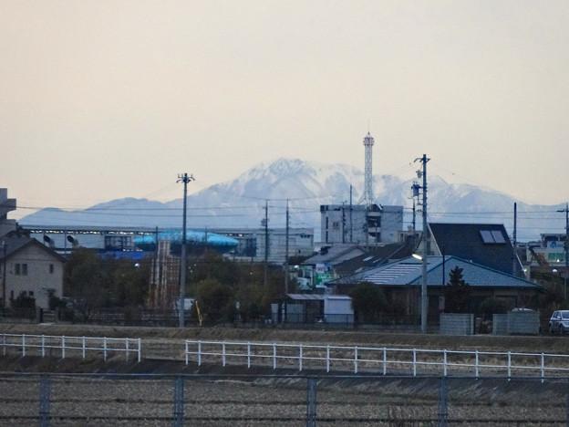 写真: 春日井市内から見えた、雪を頂く伊吹山 - 3