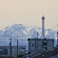 写真: 春日井市内から見えた、雪を頂く伊吹山 - 6