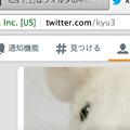 写真: Twitter公式WEBがまたプチリニューアル? @ が ベル に変わって『通知機能』に