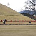 写真: 青塚古墳:古墳を縁取るように並べられた、沢山の壺形埴輪 - 9