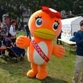 写真: 旅まつり名古屋 2014 No - 084:うながっぱ!
