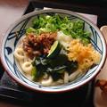 Photos: 丸亀製麺:あさりしぐれ 塩ぶっかけ