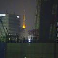 写真: 夜の向野橋から見た景色 No - 60:名古屋テレビ塔
