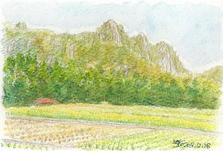 20131228三倉岳大栗林にて