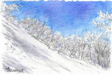20140329霧氷