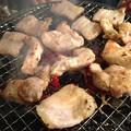 Photos: 焼き鳥の鉄人2