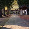 新宮熊野神社参道