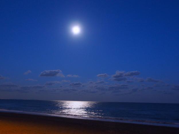 月光価千金