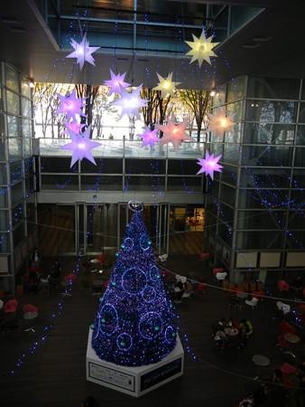 けやき広場のクリスマスツリー
