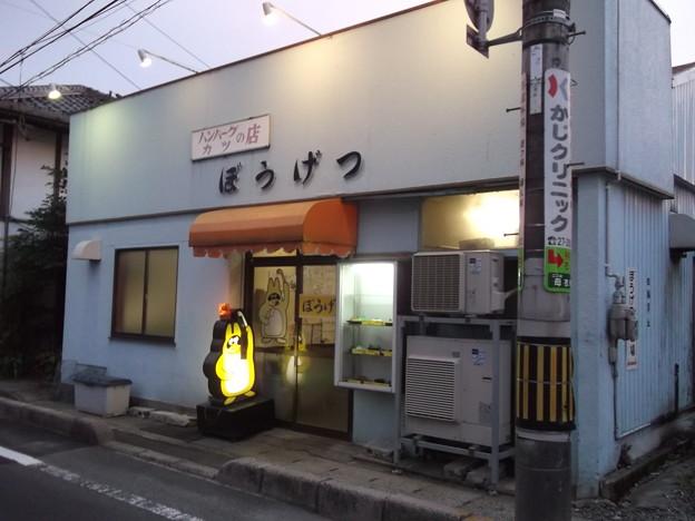 ぼうげつ 2013.06 (01)
