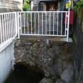 Photos: 120908-01おしゃもっさん(江尾)