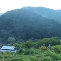 Photos: 120901-02桜峠