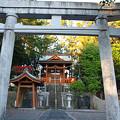 Photos: 120915-03龍神社(新浜)