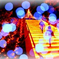 Stairs to Christmas...........