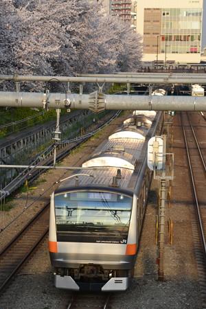 桜と通勤快速(E233系0番台)@東中野-中野 [3/28]
