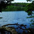 Photos: 白駒池