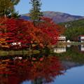 紅葉と車山