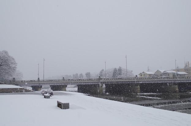 kamo river13