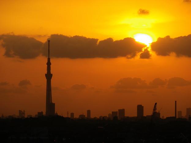 ALWAYS (三丁目のパチンコ屋の屋上からの夕日)