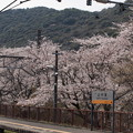 Photos: 山中渓駅