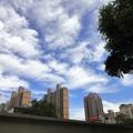 Photos: 上海  空 3