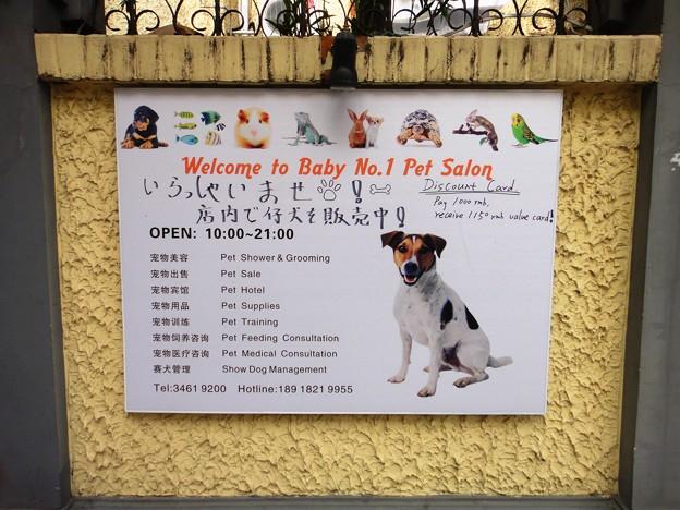 BABY NO.1 日本語も有り~~~~~ッ(笑)